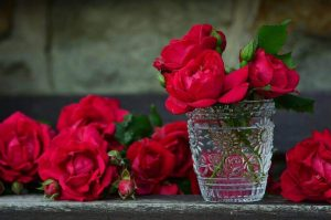 Rose Oil Review - Rose Absolute Essential Oil 2